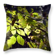 First Morns Light Throw Pillow