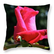 First Petal Throw Pillow