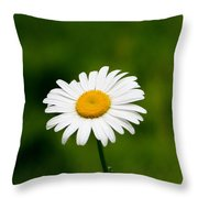 First This Year Throw Pillow