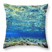 Fish And Coral Underwater Reflected In Throw Pillow