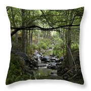 Fish Creek Throw Pillow