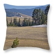 Fish Creek Valley Throw Pillow