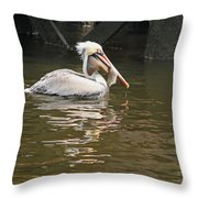 Fish Is Good For You Throw Pillow