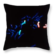 Fish Micrograph Of Chromosomes Throw Pillow