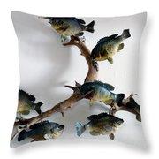 Fish Mount Set 05 A Throw Pillow