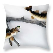 Fish Mount Set 06 A Throw Pillow