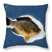 Fish Mount Set 08 C Throw Pillow