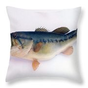 Fish Mount Set 09 A Throw Pillow