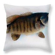 Fish Mount Set 10 A Throw Pillow