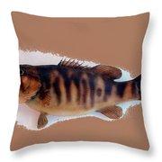 Fish Mount Set 11 B Throw Pillow