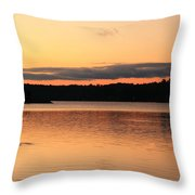 Fish Ring On The Lake Throw Pillow