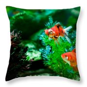 Fish Tank Throw Pillow