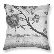 Fisher Bird Throw Pillow