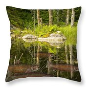 Fisherman's Dream Trout Pond Throw Pillow