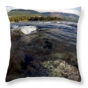 Fisheye Seascape Throw Pillow
