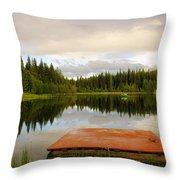 Fishing A Mirror Throw Pillow