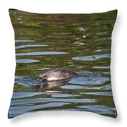 Fishing For Breakfast Throw Pillow
