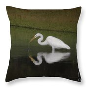 Fishing In The Morning Throw Pillow