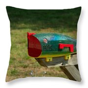 Fishing Lure Mailbox 1 Throw Pillow