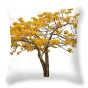 Flam Of The Forest Throw Pillow