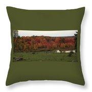 Flaming Foliage Autumn Pasture Throw Pillow
