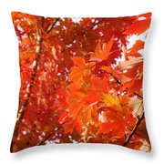 Flaming Maples Throw Pillow