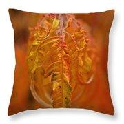 Flaming Sumac Throw Pillow