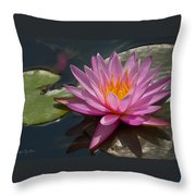 Flaming Waterlily Throw Pillow