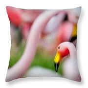 Flamingo 4 Throw Pillow
