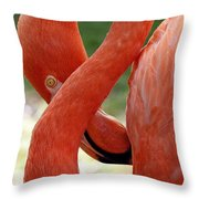 Flamingo Eight Throw Pillow