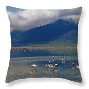 Flamingoes In Crater Lake At Ngorongoro Throw Pillow