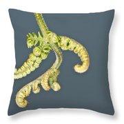 Flashlit Fern Throw Pillow