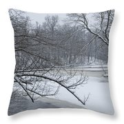 Flat River In Winter No.026 Throw Pillow
