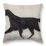 Flatcoat Retriever Throw Pillow