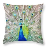 Flaunting Throw Pillow