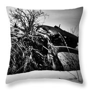 Flee Of Debris Two Throw Pillow