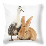Flemish Giant Rabbit And Call Duck Throw Pillow