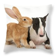 Flemish Giant Rabbit And Miniature Bull Throw Pillow