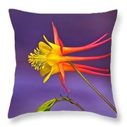 Flight Of Fancy Throw Pillow