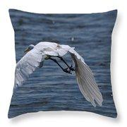 Flight Over The Lake 3 Throw Pillow