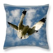 Flights Backed Up Throw Pillow
