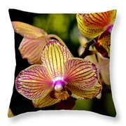 Flirting Throw Pillow