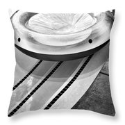 Float Bw Palm Springs Throw Pillow