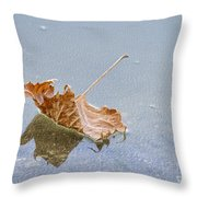 Floating Down Lifes Path 2 Throw Pillow