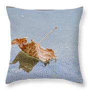 Floating Down Lifes Path Throw Pillow