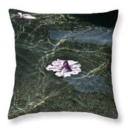 Floating On Reflections Throw Pillow