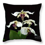 Flock Of Dendrobium Throw Pillow