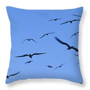 Flocking Frigatebirds Riding Throw Pillow