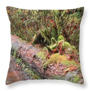 Flooded Bridge Throw Pillow