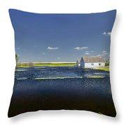 Flooded Farm Throw Pillow